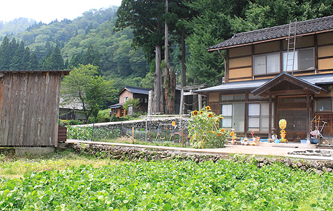 ainokura05.jpg